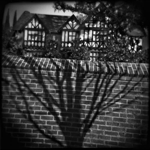 5361__630x500_16-thomasalleman-bluesky-october2009.jpg