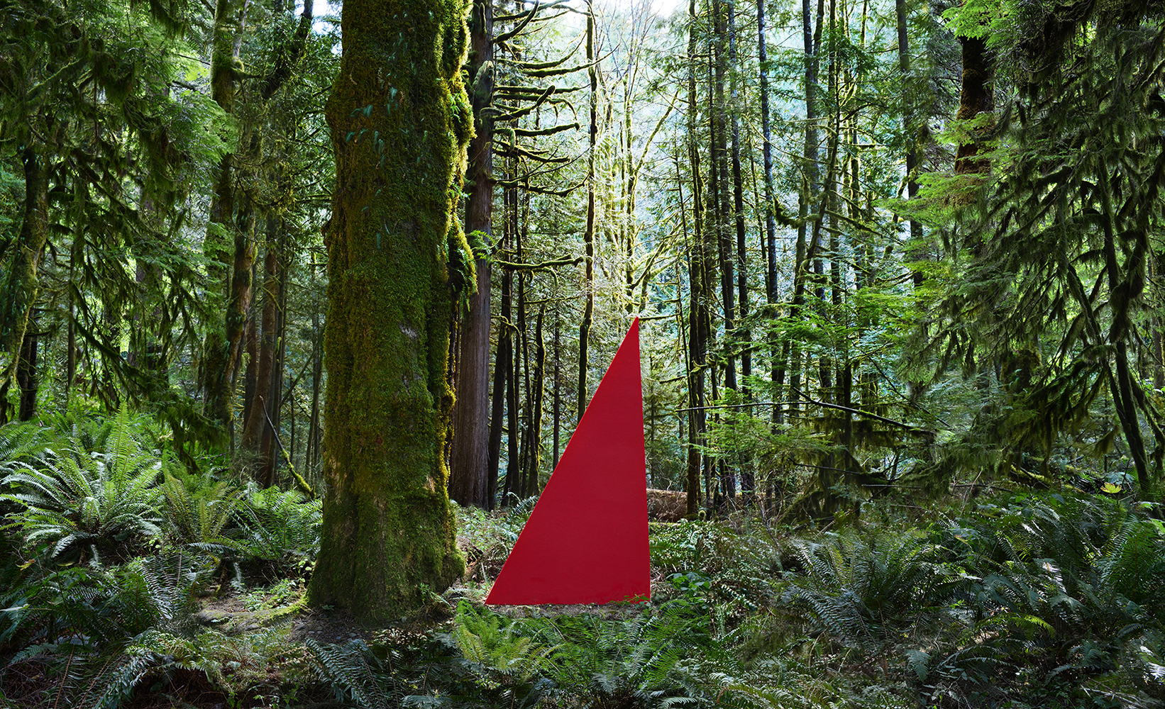 Jennifer Zwick,  North Bend Red Triangle , 2014