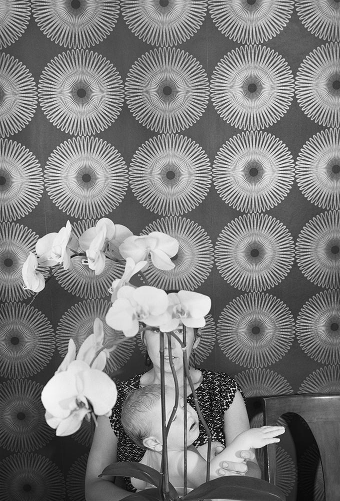 Josh Smith,  Orchids , 2014
