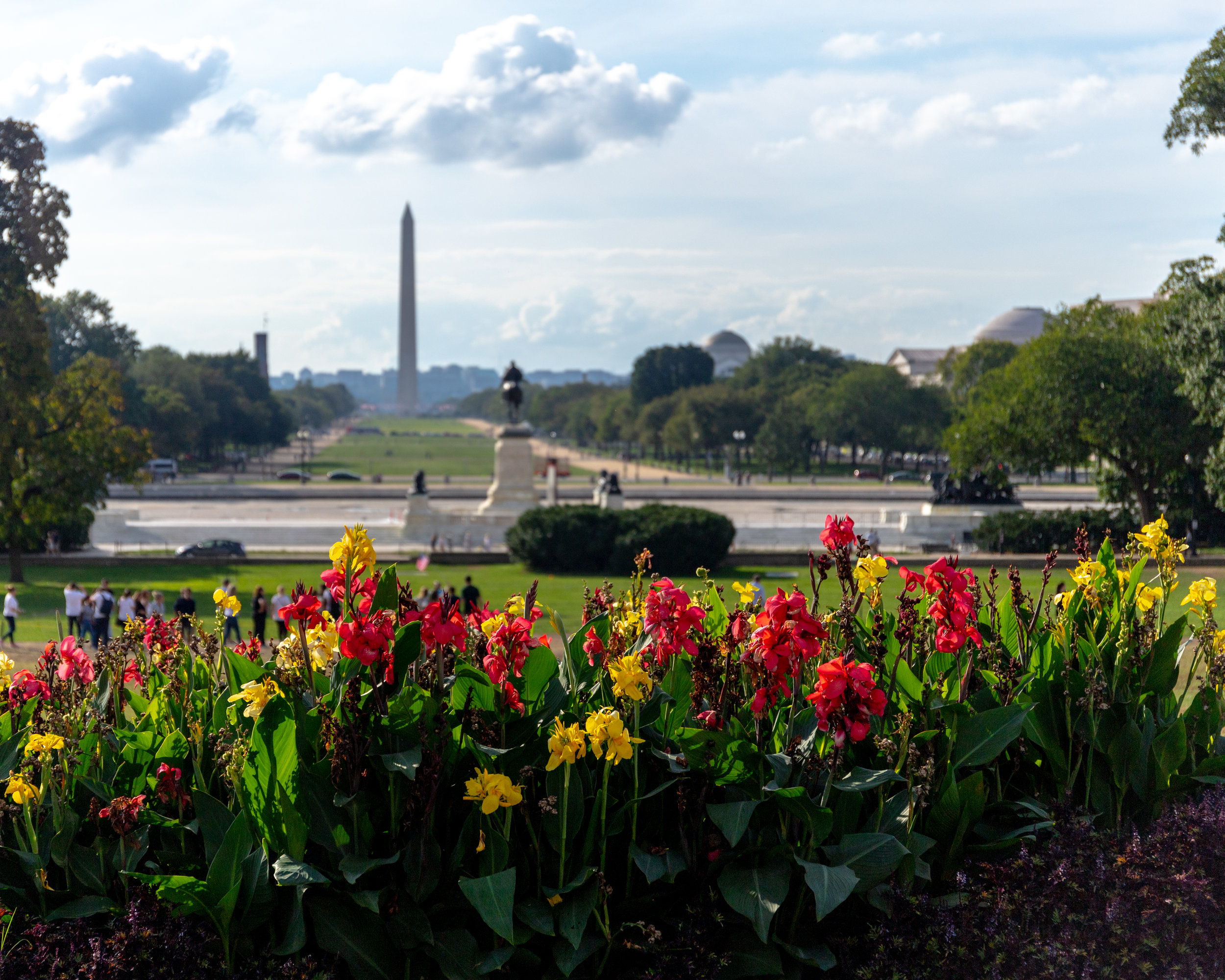 View from U.S. Capitol (Washington, D.C.)