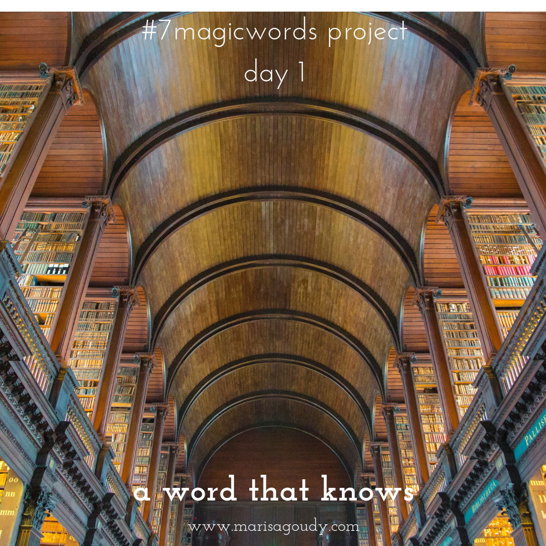 #7MagicWords day 1: a word that knows