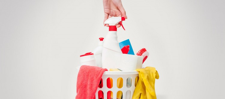 cleaning-products2-750x330.jpg