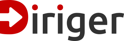 Diriger.Logo.Word.Red.Grey.Transparent.800x262 50.png