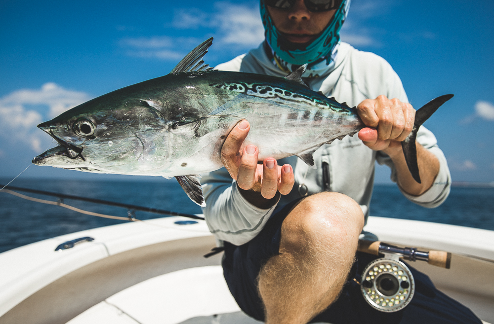4 Hour Trip $400 - Targets vary by season and weather patterns. Four hour trips will generally be within the intercoastal waters of Santa Rosa sound or within a short distance of pensacola pass.