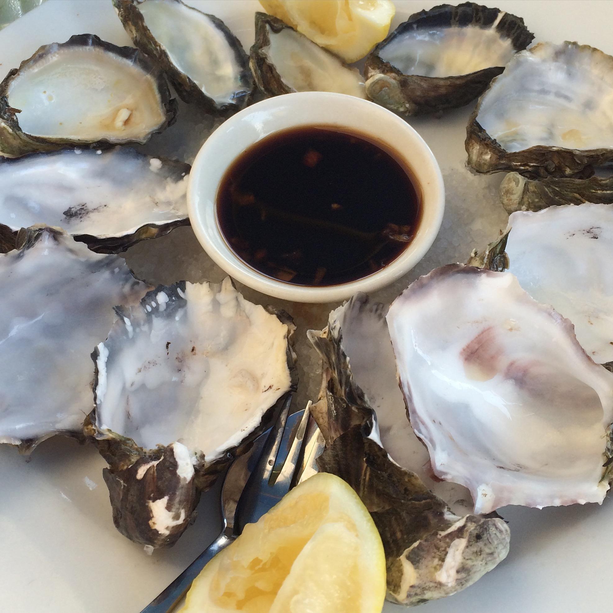 sweet suckering oysters