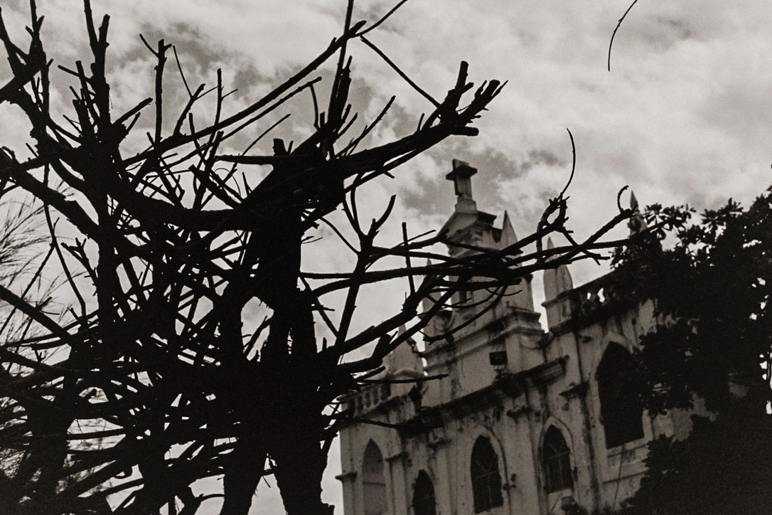 the thorns of Christ