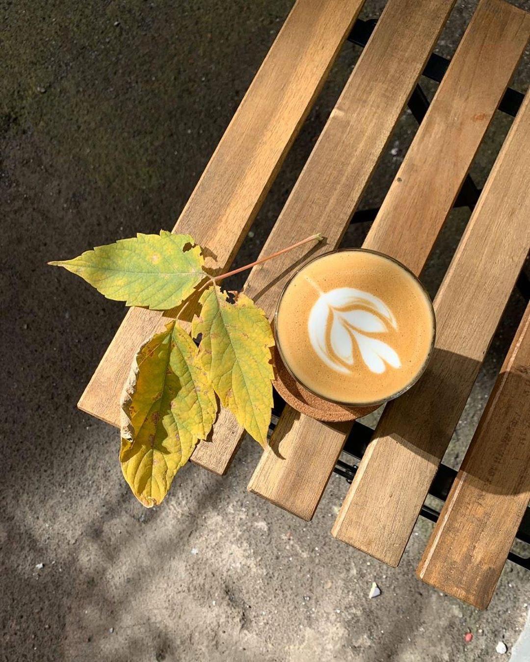 Латте в кофейне Альпака и кофе