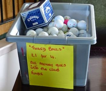 Yes, They Recycle! -- Golf balls are never lost, just   temporarily missing in action.