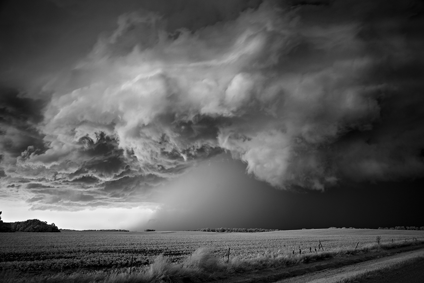 Mitch Dobrowner_Storm over Field.jpg