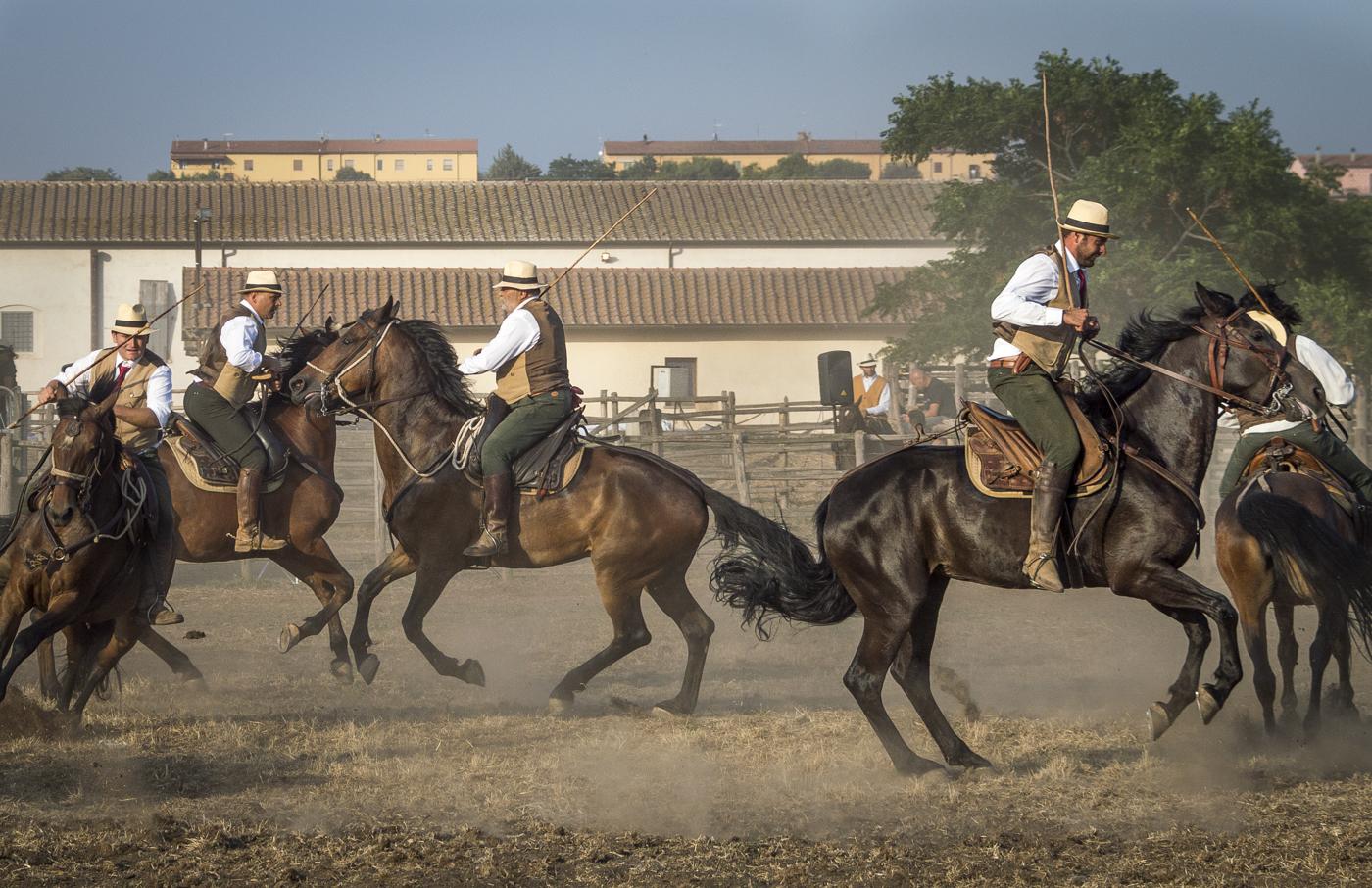 Gabrielle Saveri_USA_Italian Cowboys (I Butteri) (2 of 15).jpg