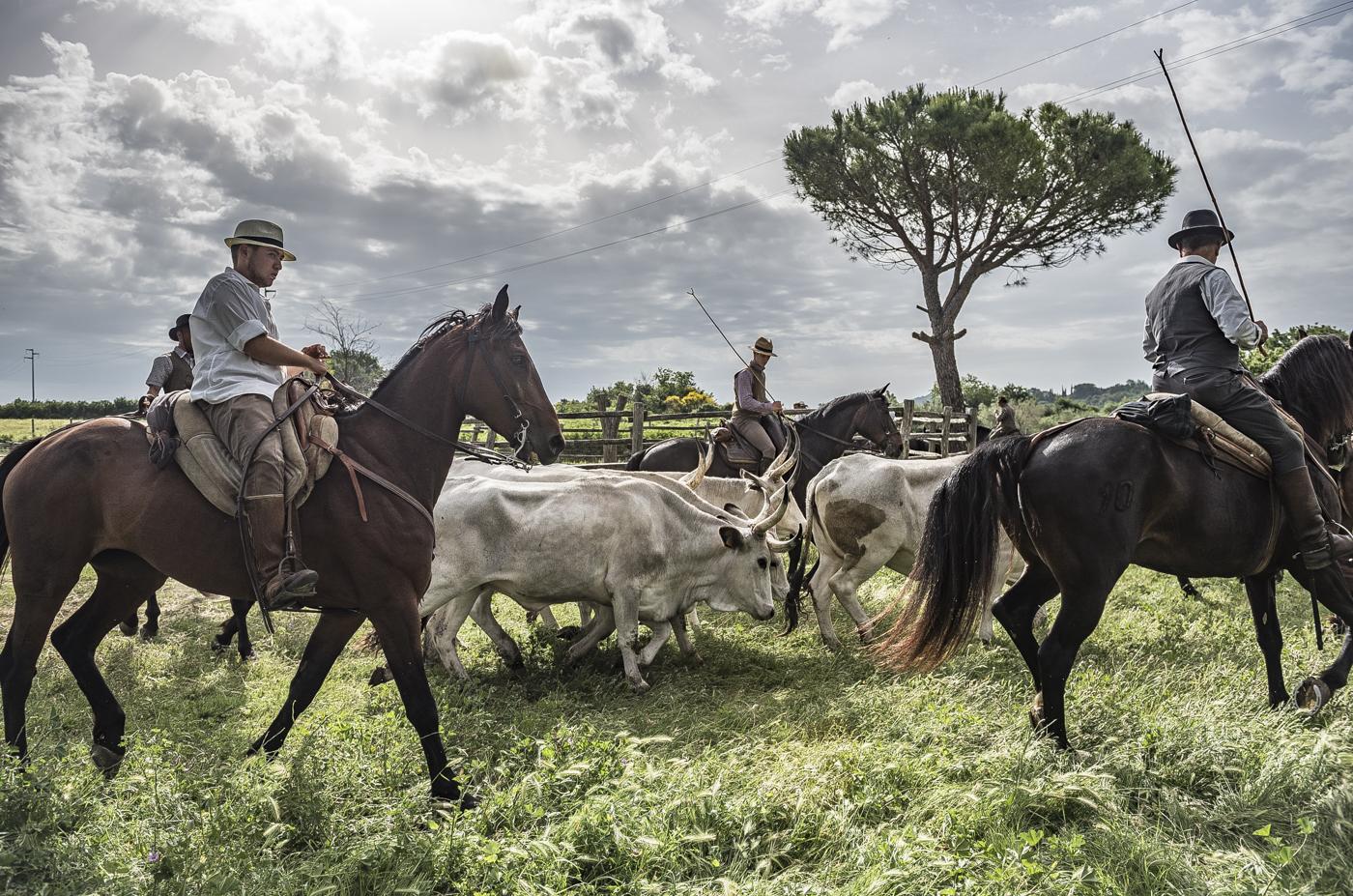 Gabrielle Saveri_USA_Italian Cowboys (I Butteri) (5 of 15).jpg