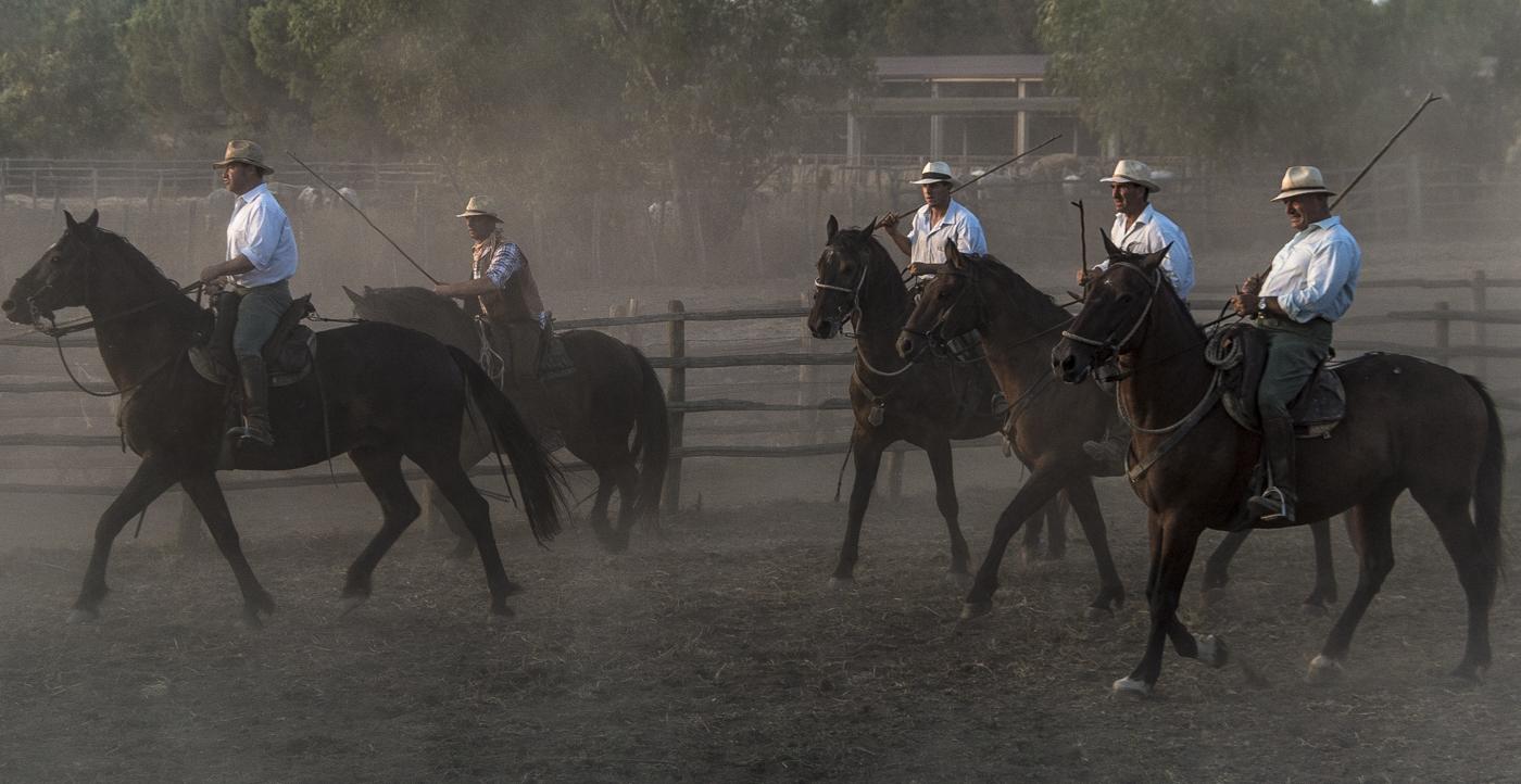 Gabrielle Saveri_USA_Italian Cowboys (I Butteri) (7 of 15).jpg