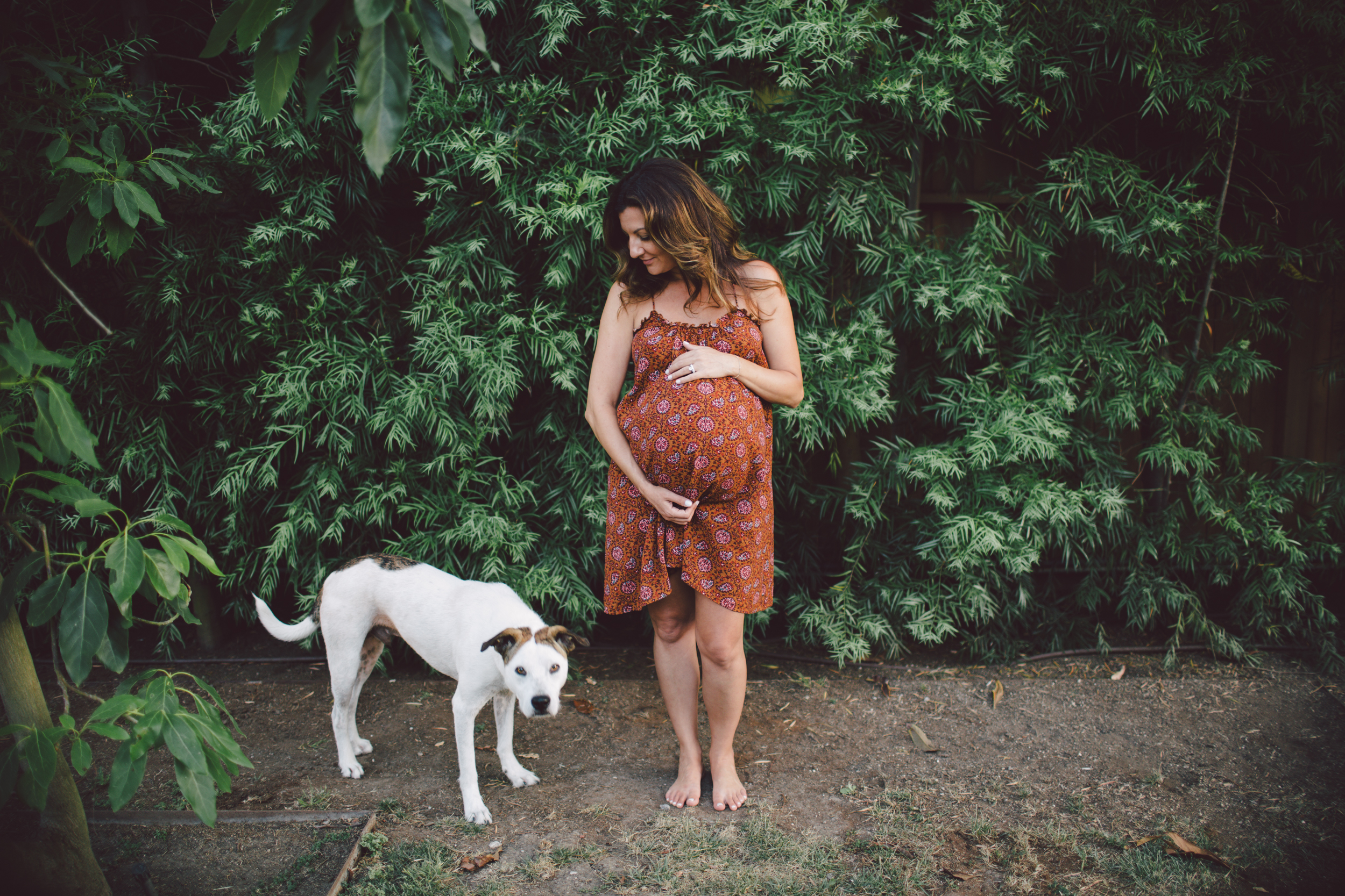 casual maternity-family-barefoot-dog-lifestyle-venice beach