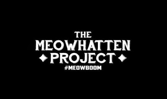 meowhatten project improv show.jpg