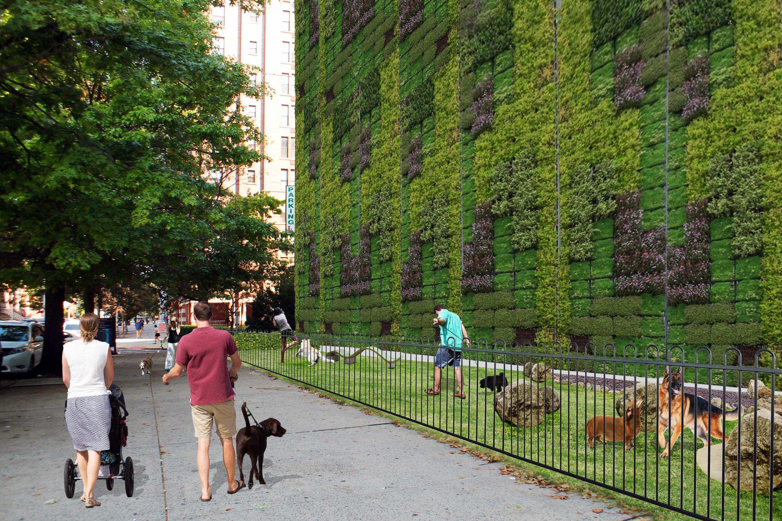 Dog Park Hoboken