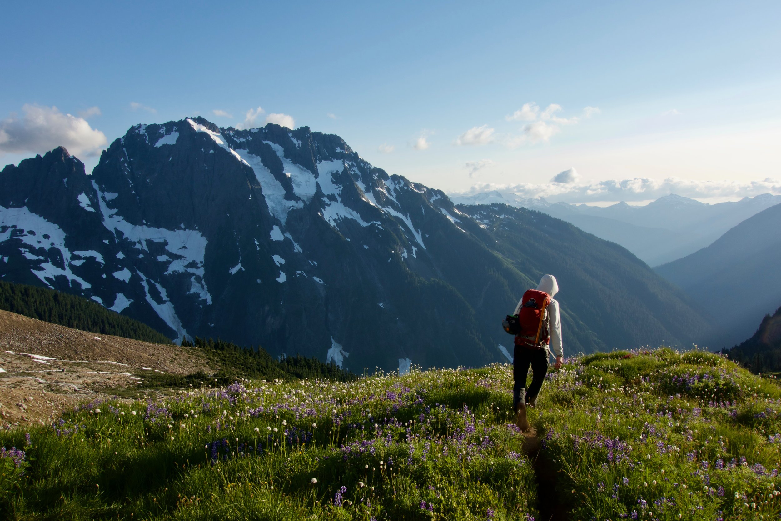 """Boston Basin alpine meadows going all """"Sound of Music"""" at golden hour"""