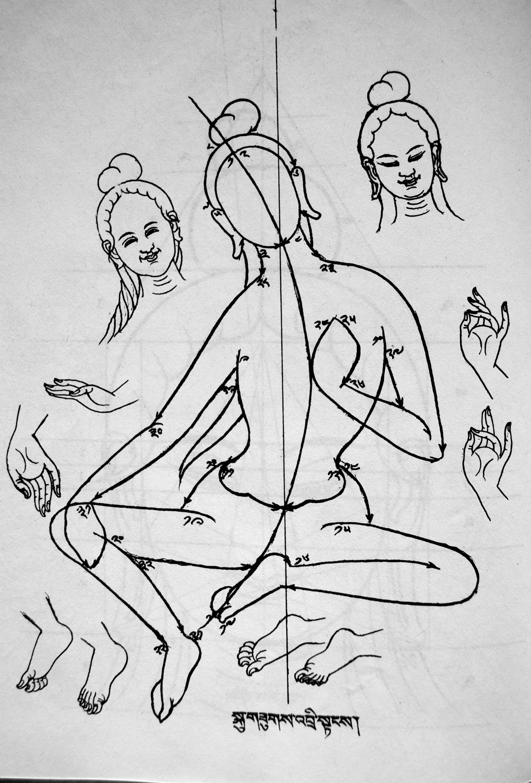 Esquisse des lignes principales d'une Tara. Tibetan Cultural & Religious Publication Centre
