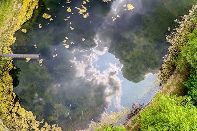 Try to find some beauty in the pond scum. . . . #dronephotography #drone #djiglobal #fromwhereidrone #drone_countries #explorecreate #beautifulplaces #droneofficial #skypixel #skyhilife_drones #gameofdronez #dronedose #dronespace #dronedaily #iamdji #droneart #thedroneu #droneglobe #dronenerds #majestic_earth #mastershots #beautifuldestinations #electic_shotz #earthpix #dronepals #agameoftones #clouds #wanderlust #behappy #pond