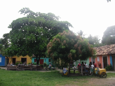 The yellow or turquoise building was where we got our dinner. The communal tables underneath the trees is where we ate together. I loved it.