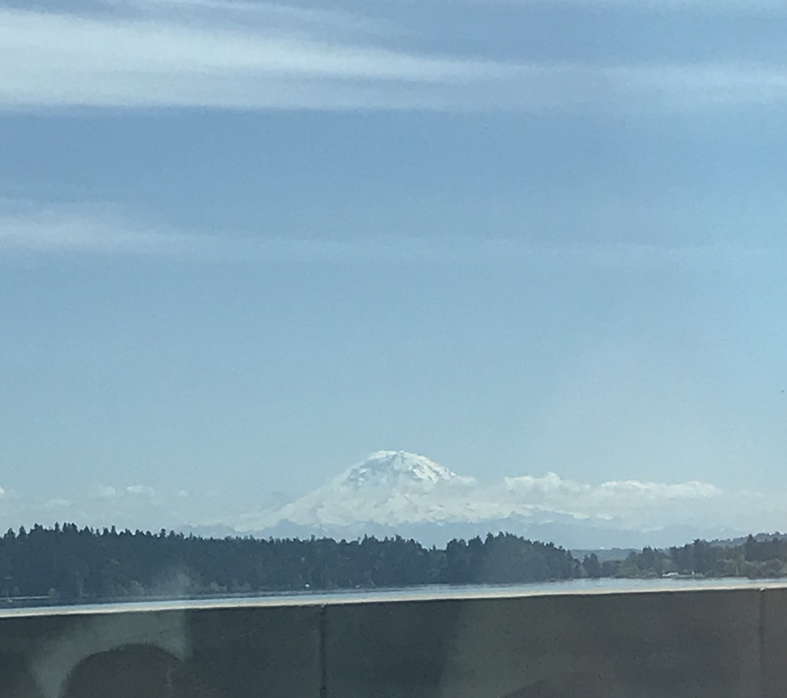 I snapped this shot while my friend drove me home from a doctor appointment. I love Mt. Rainier but have never hiked on it! I kinda gave it up in a divorce in my twenties and then moved away (long story). I hope I can get there one day despite my health issues.