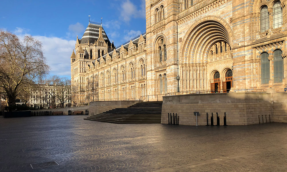 The Natural History Museum.
