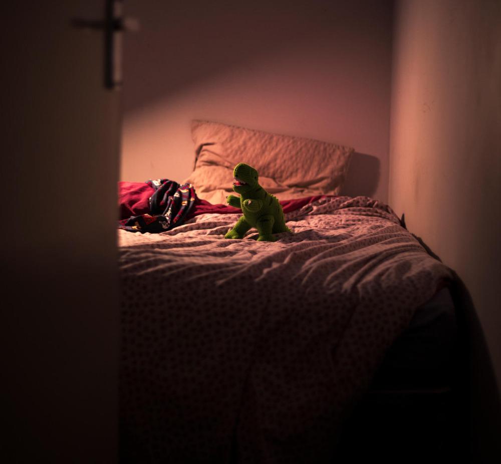 Dinosaur Dreams 2.jpg