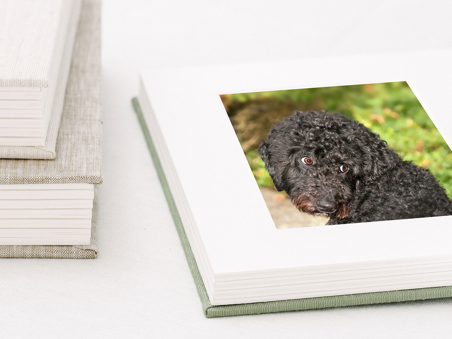 A hand-crafted portrait album is an ideal option for clients that want a collection of desk-sized portraits.  Images are beautifully matted in high quality cotton rag mats.  The book-style hardcover is available in your choice of gorgeous linen or silk fabrics and looks lovely on a coffee table or bookshelf.