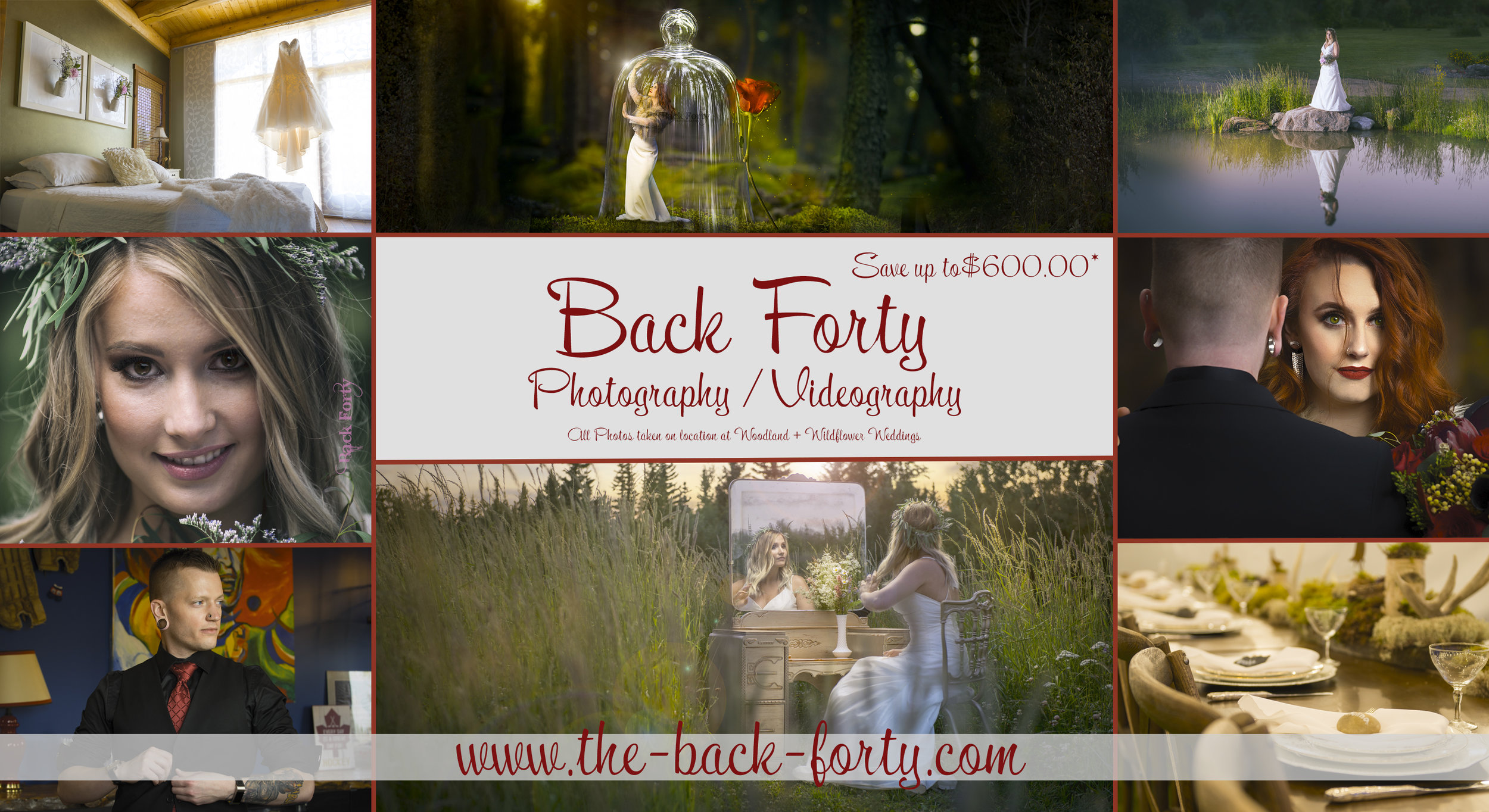 Back Forty Photo Postcard 500 towards.jpg