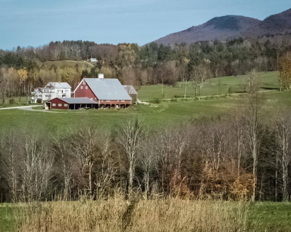 Harvey's Farm