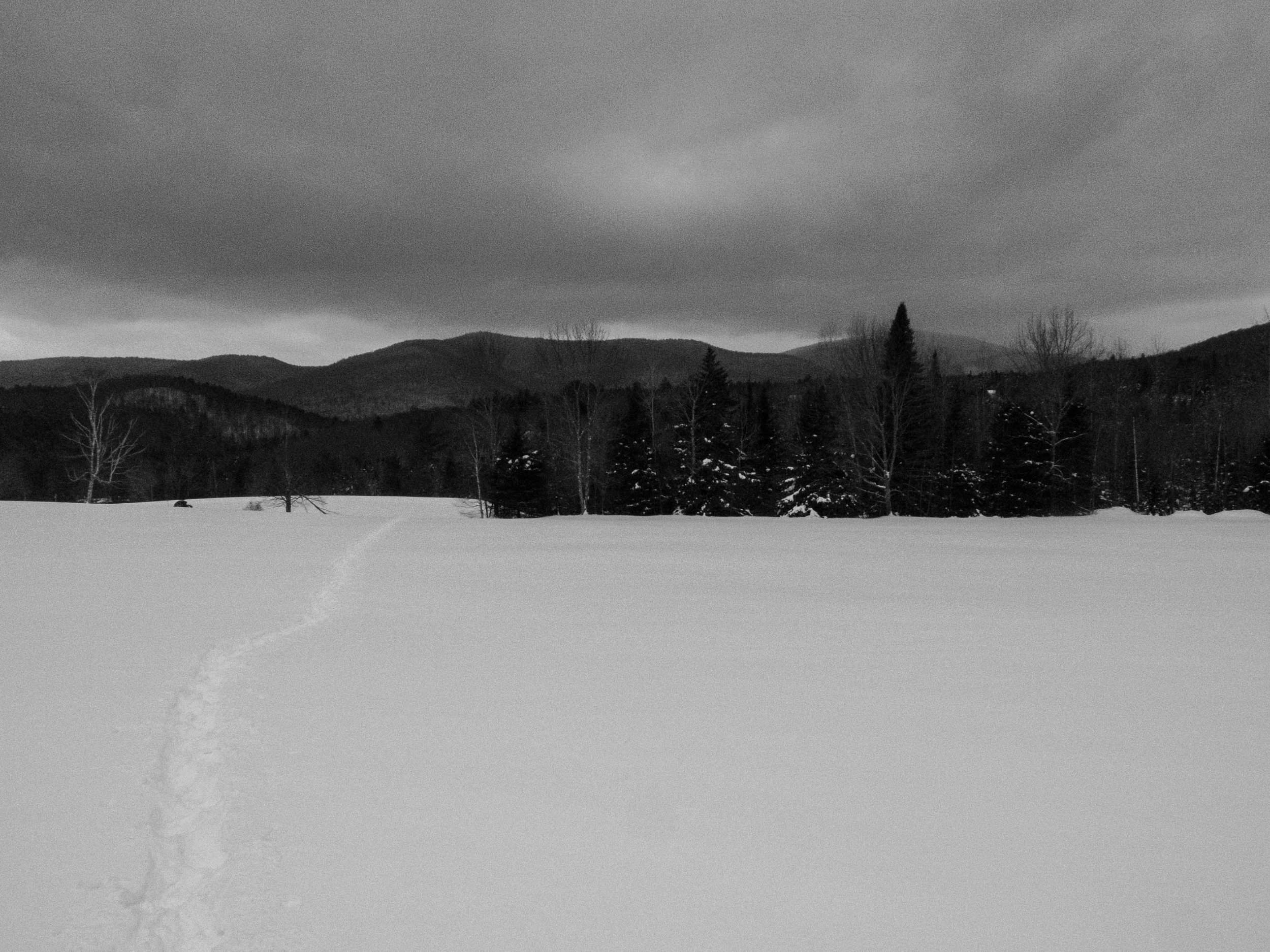 At this point the snow drifts across a large open plain. Keep an eye on the red ribbons and the RASTA blazes or you'll lose the trail. This isn't a big deal except you lose the snow pack and post hole up to your knees.