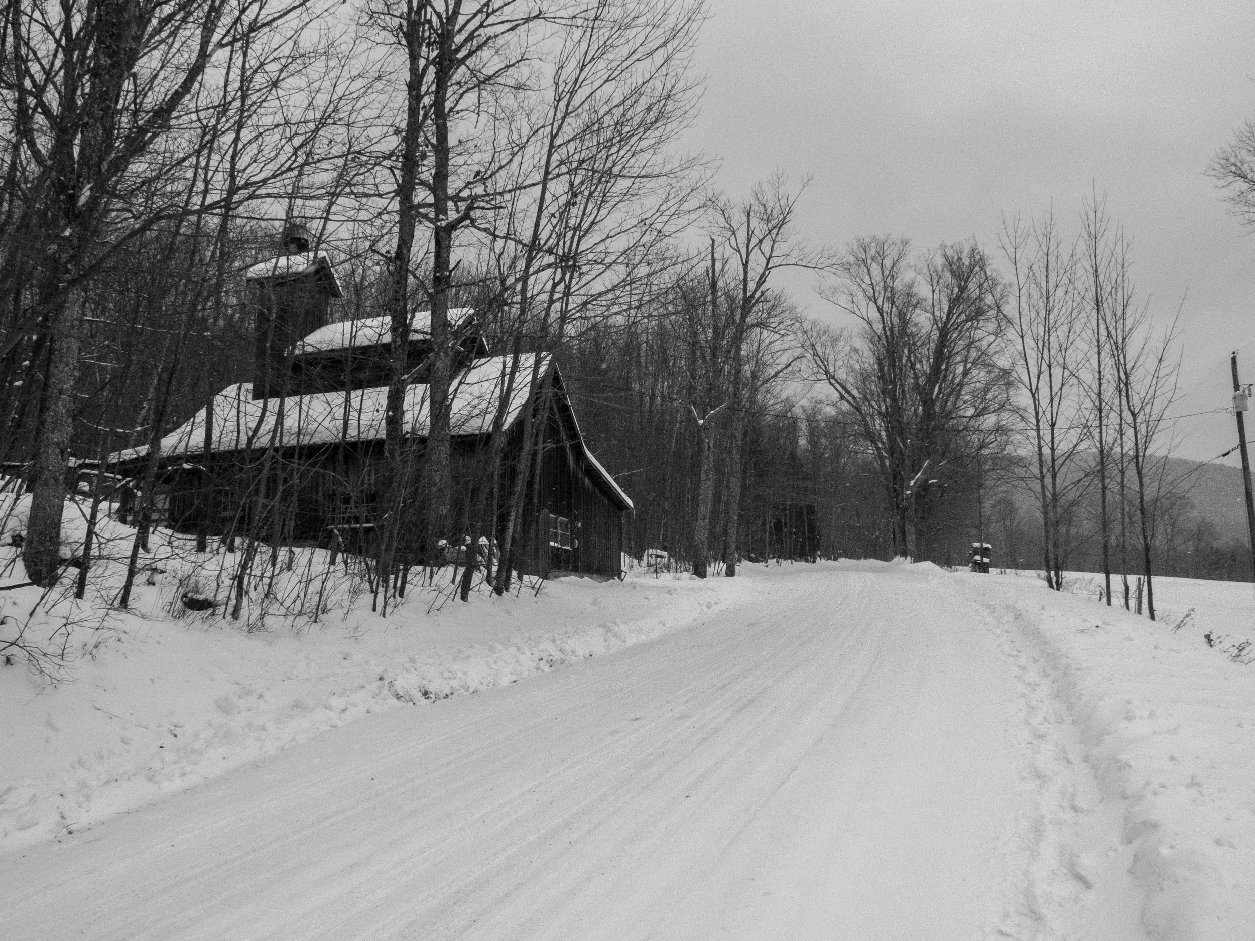 When you get to North Hollow Road, you can either turn west again, and follow the trail back to where you began and jump off the trail by the old schoolhouse, but I jumped off here and walked the road the rest of the way home. Pictured is Harold Hubbard's sugar shack.