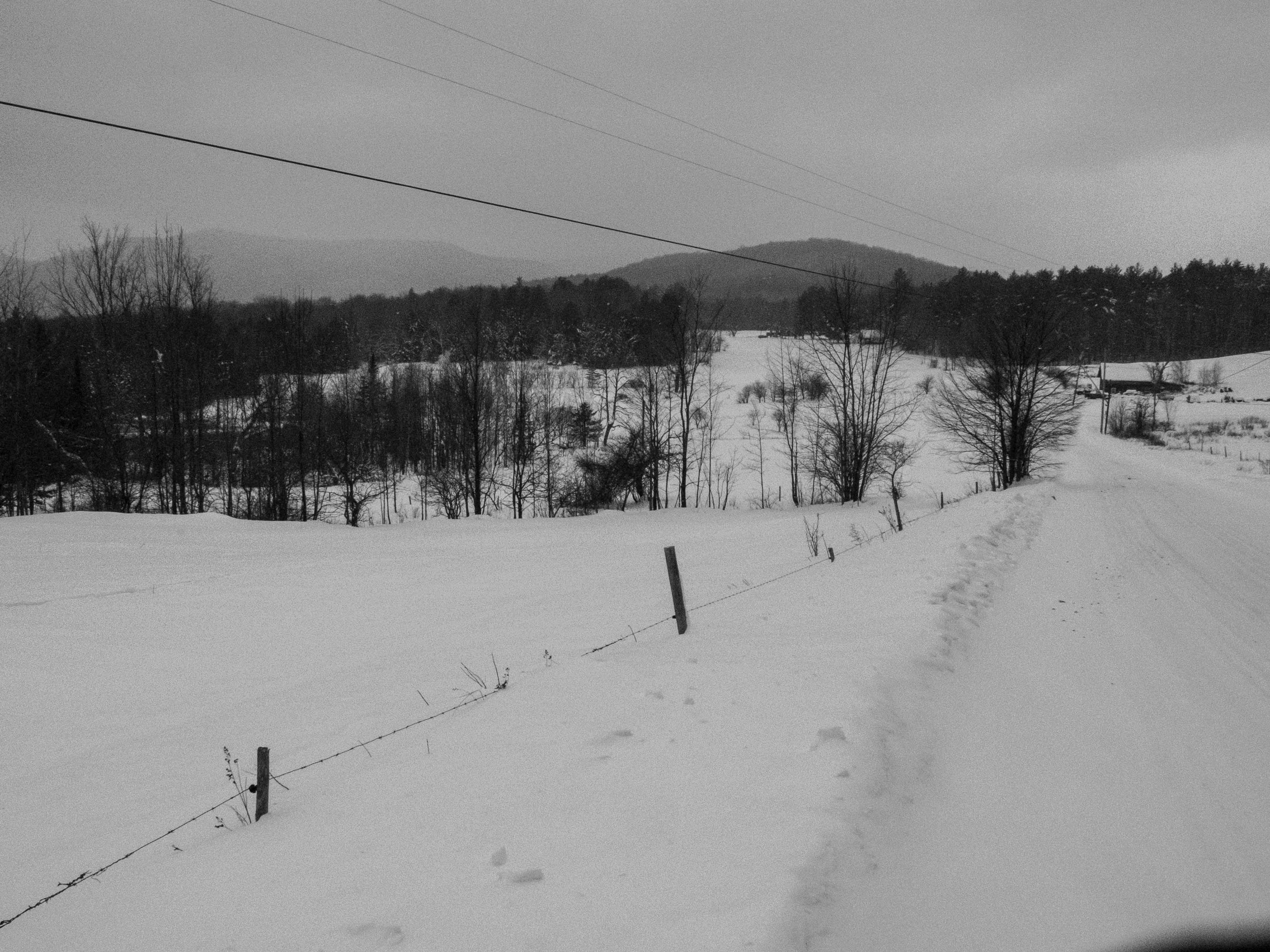 You can follow the trail west through the pasture or down North Hollow Road.