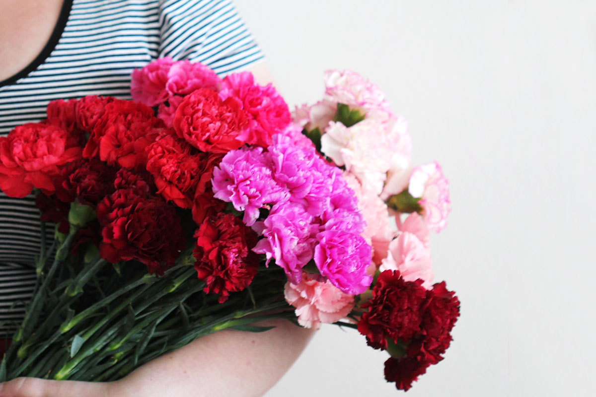 carnations-4-ways-bouquet-6.jpg