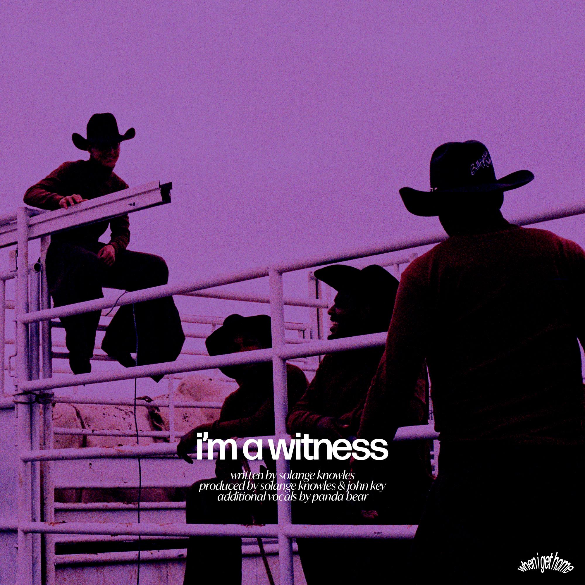 13. solo's a witness.jpg