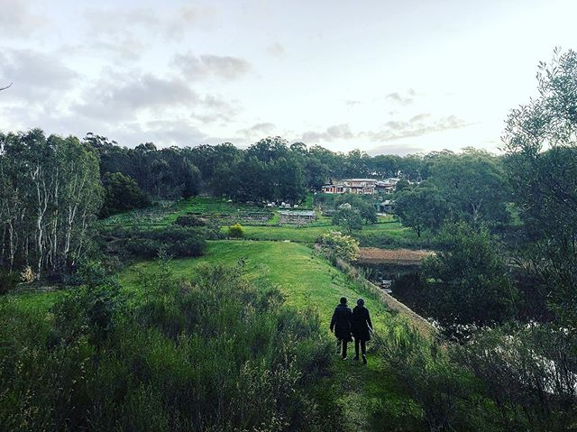 Such a phenomenal space for a phenomenal weekend as we reach the tail end of our regeneration practitioner course #regenerationintensive #regenesisgroup #regenerativethinking #commonground #thewedge #regenerativepractices #seymour #australia #regenerativecommunity #placesourcedpotential #place #essence #welcometocountry