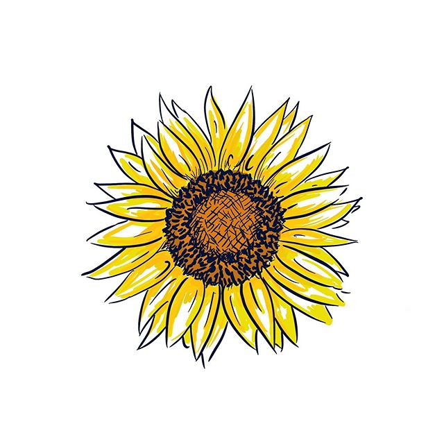 Summertime. . . . #summer #sunflower #sunshine #ipadpro #illustration #art #summertime #doodle