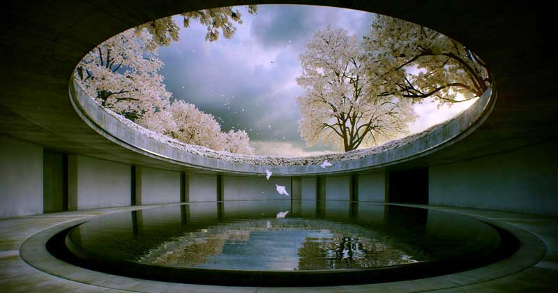 Related: 6 Best Museums in Japan Where Art and Nature Collide -