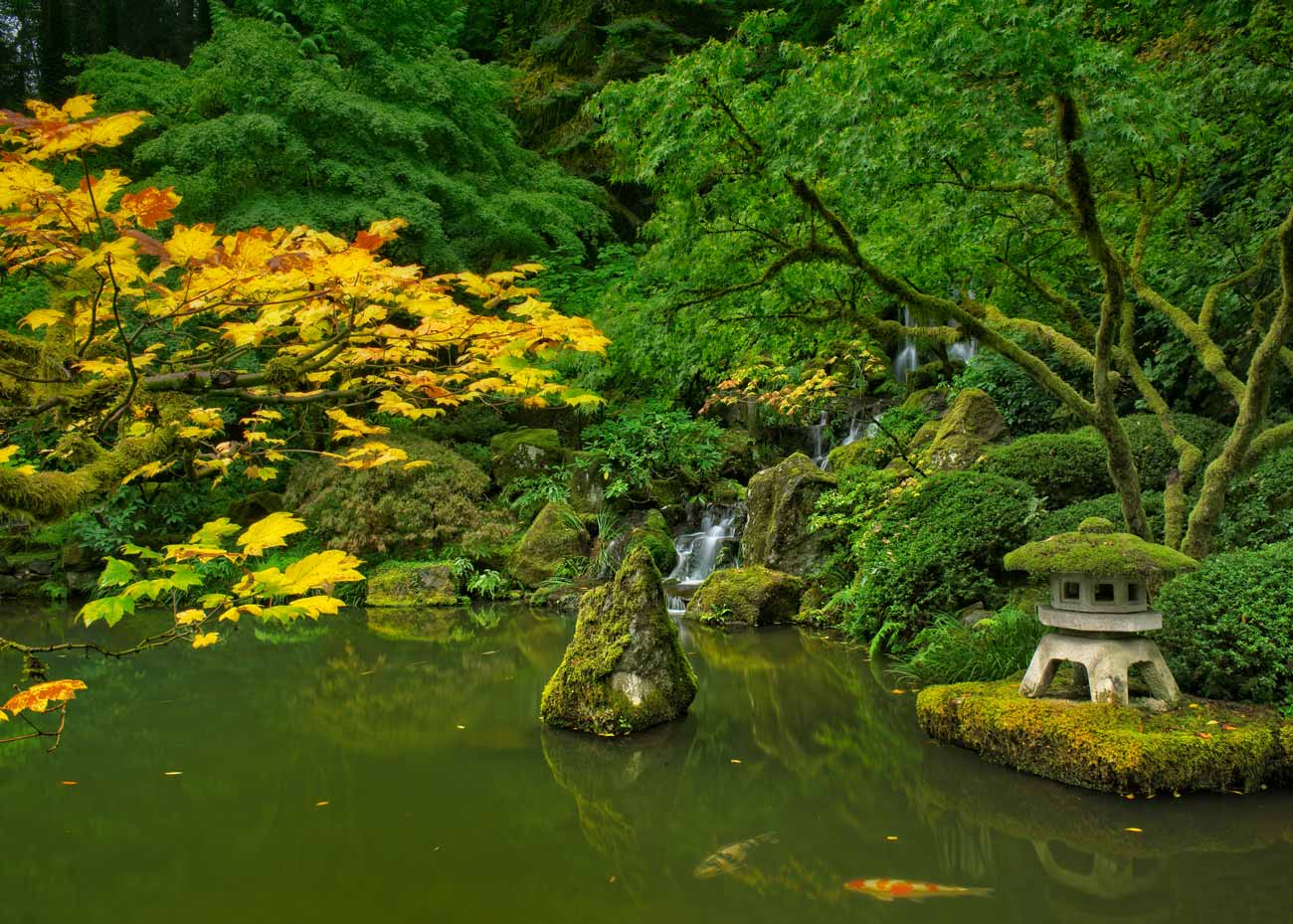 ©  J  im Choate  /  Creative Commons , Portland Japanese Garden