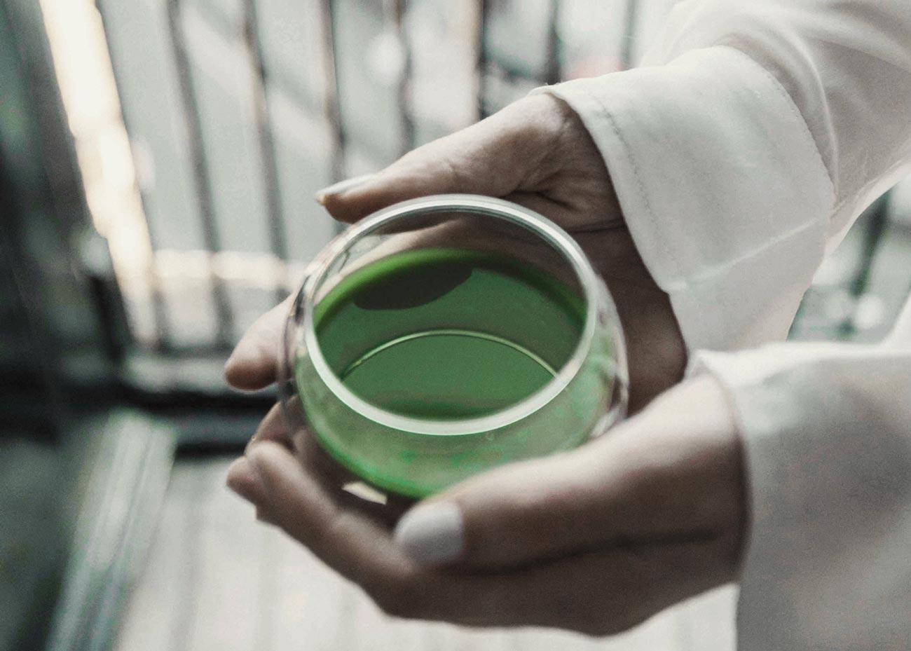 ©  Matchæologist , Tea Ceremony