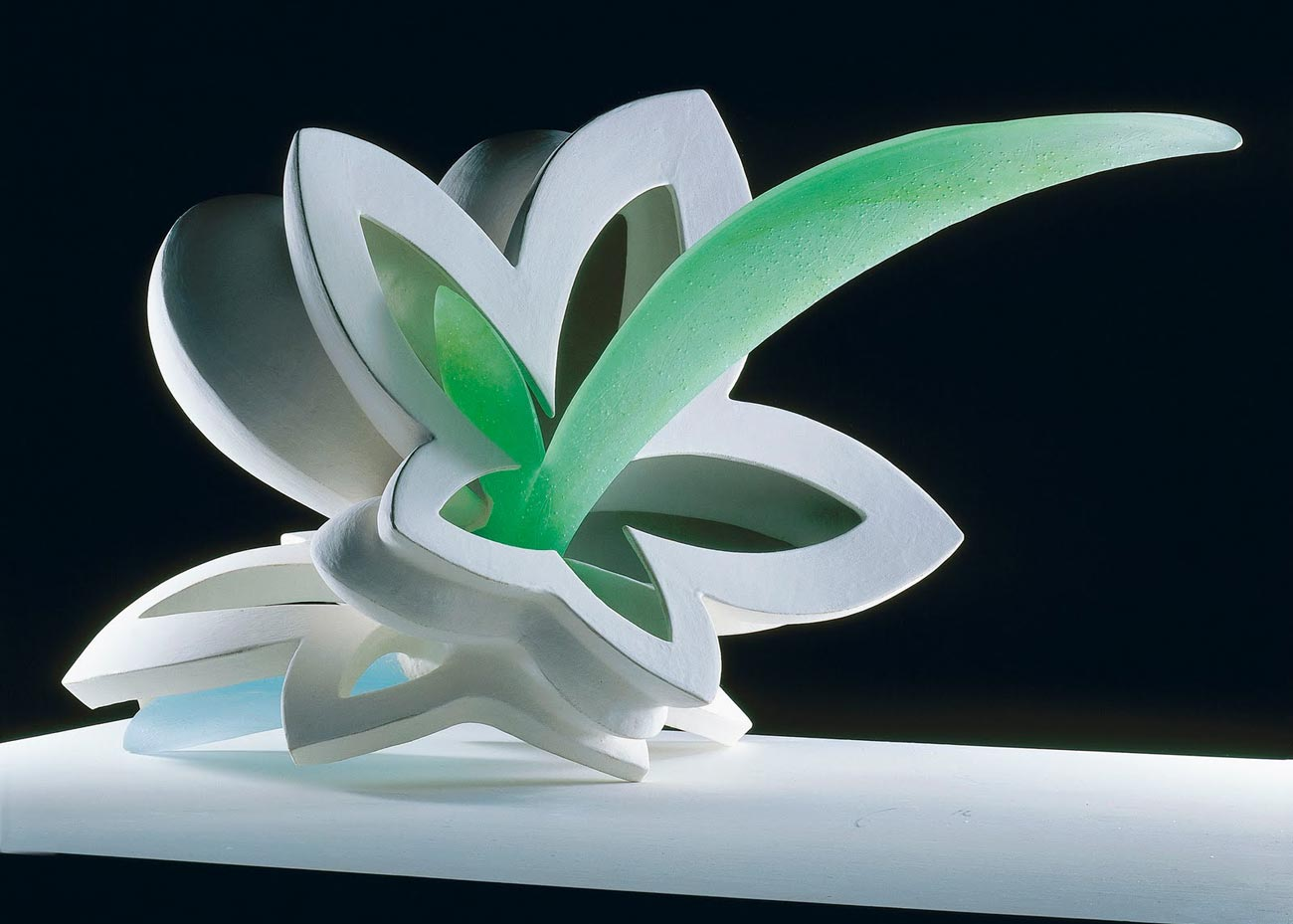© Etsuko Tashima, Cornucopia, 2009,  Joan B Mirviss Gallery
