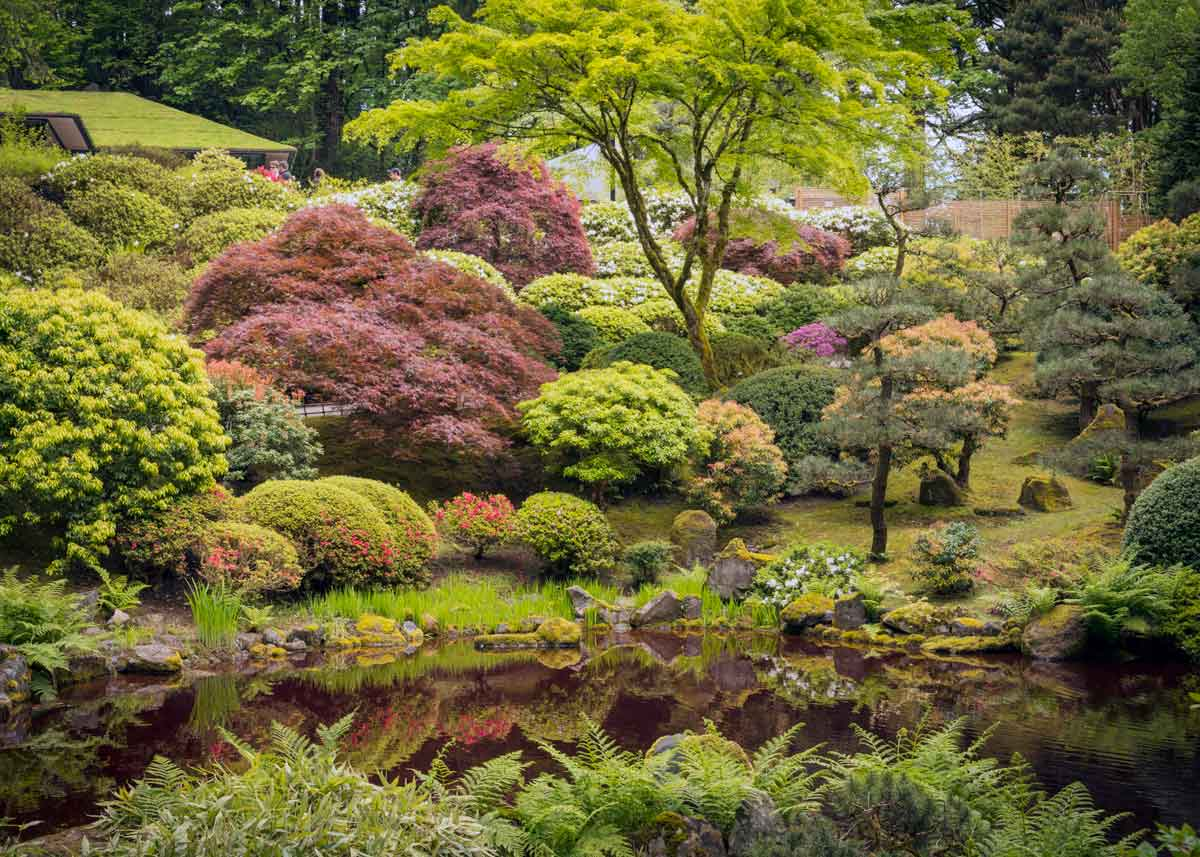 © Bruce Forster, Strolling Pond Garden