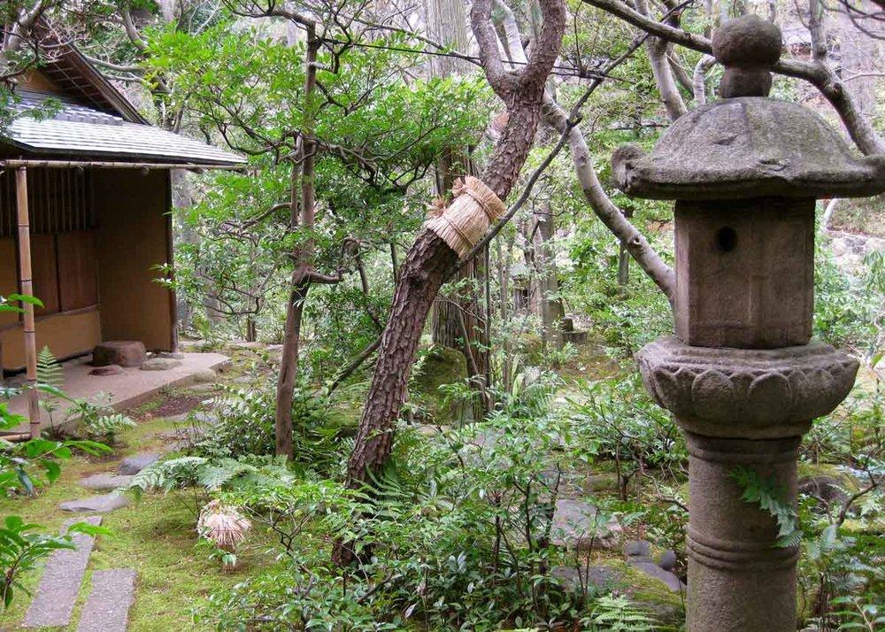 Authentic Japanese Garden Design, Japanese Tea Garden Water Basin
