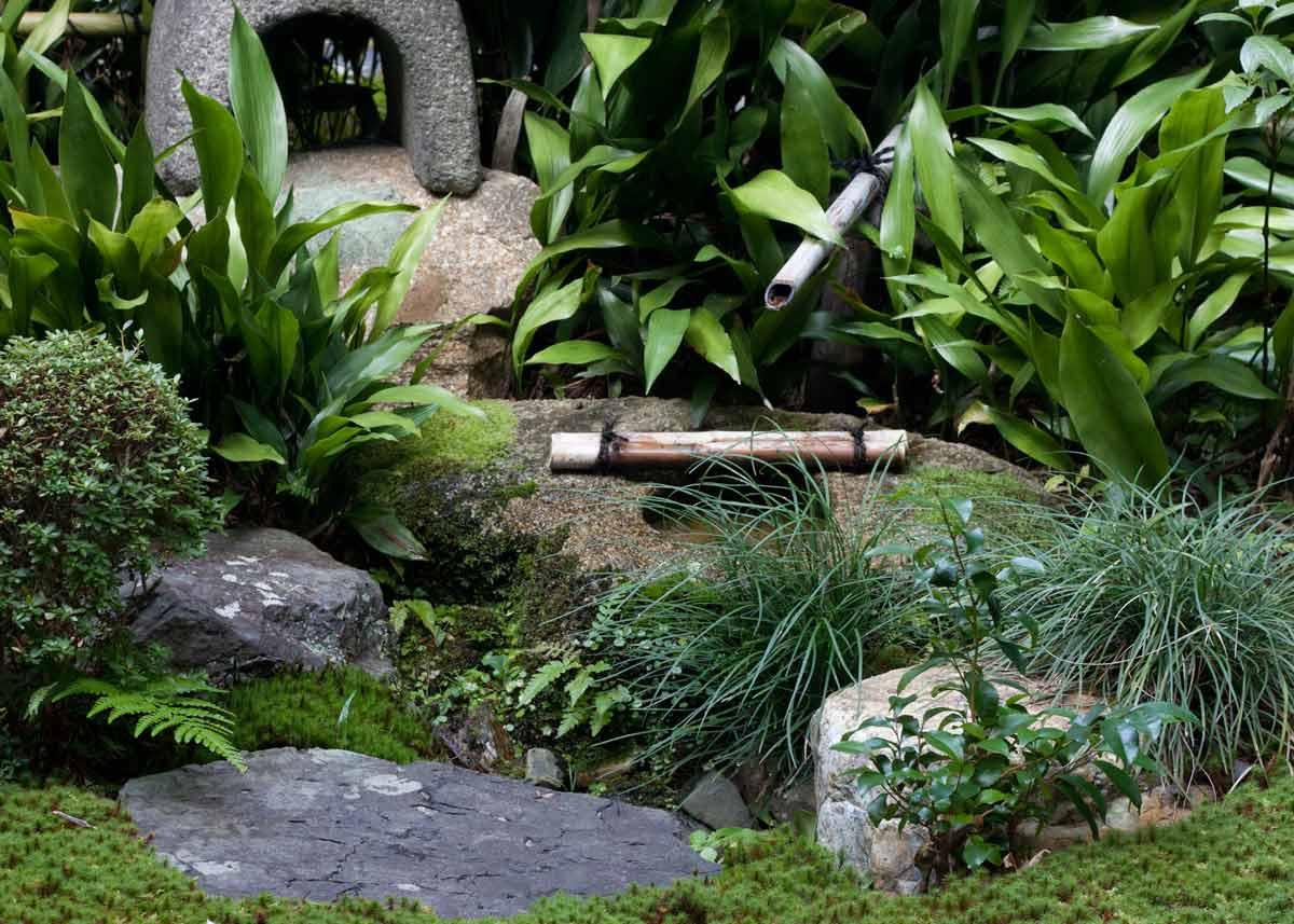 © Anika Ogusu, Real Japanese Gardens, Tsukubai