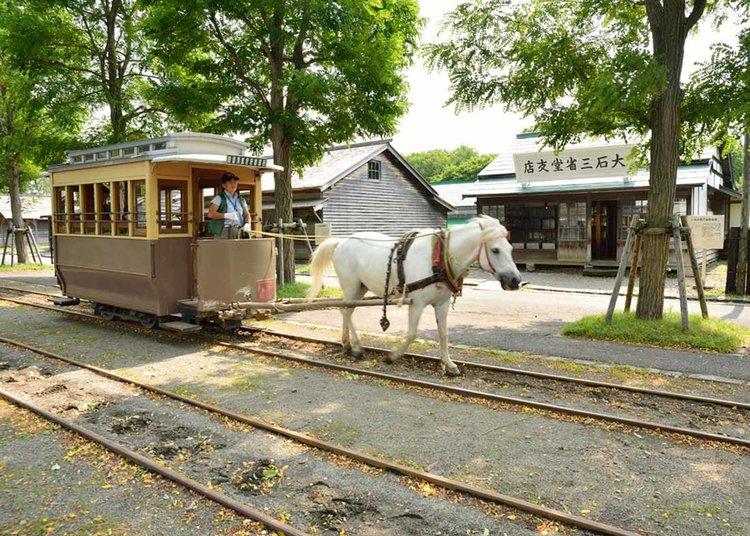 © Sapporo Travel, Hokkaido Aldeia Histórica Carruagem puxada por cavalos