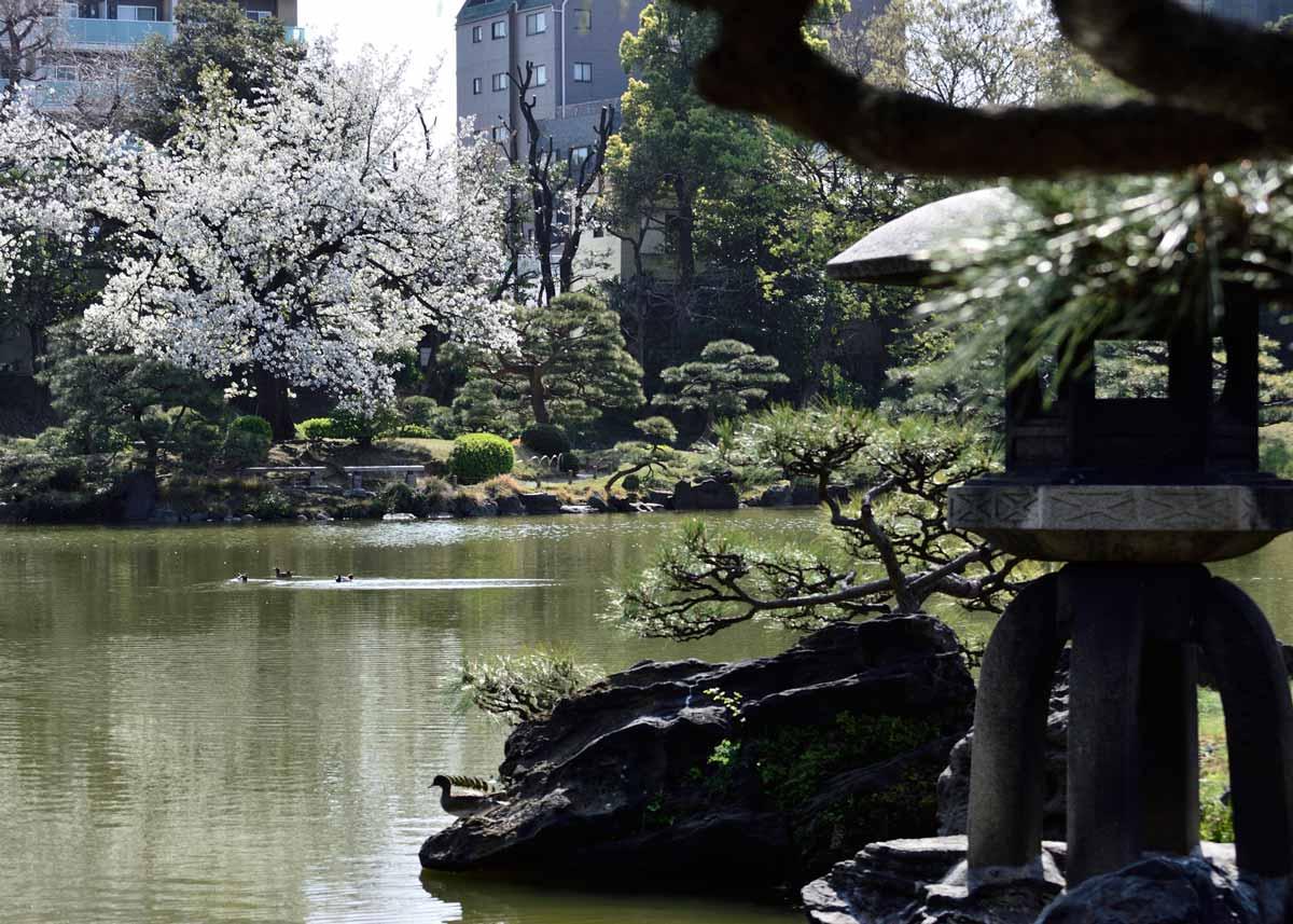 © Kiyosumi Garden, Stone Lantern in Kiyosumi Garden