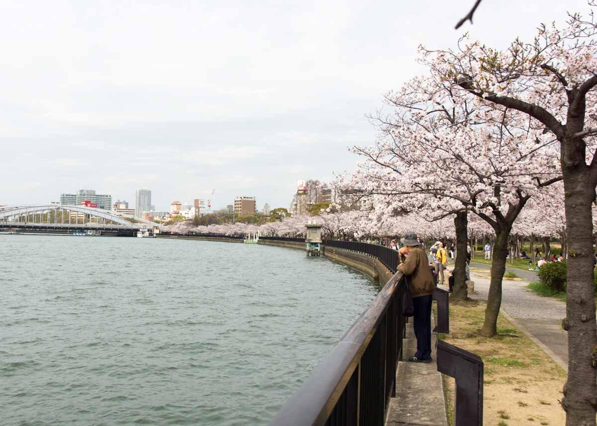 ©  lasta29  /  Creative Commons , Kema Sakuranomiya Park