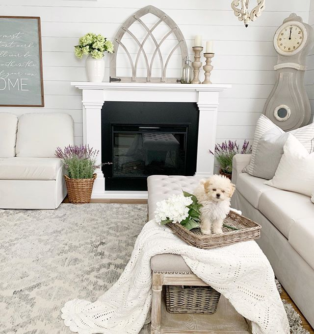 Heading back home from Atlanta, ready to go home and squeeze my sweet family! I have some fun projects I am working on this week and can't wait to have you follow along! Can you guess what's first on the list? . . #fixerupper #fixerupperstyle #farmhousestyle #farmhousedecor #farmhouse #cottagestyle #cottagestyledecor #bhgstylemaker  #modernfarmhouse #myhousebeautiful #mysmphome  #farmhouseinspired #homedecorating #homedecorideas  #imsomartha #farmhousefresh #farmhouseliving #joannagaines #inspire_me_home_decor #myhousebeautiful #homefabulous #farmhouseliving #currentdesignsituation