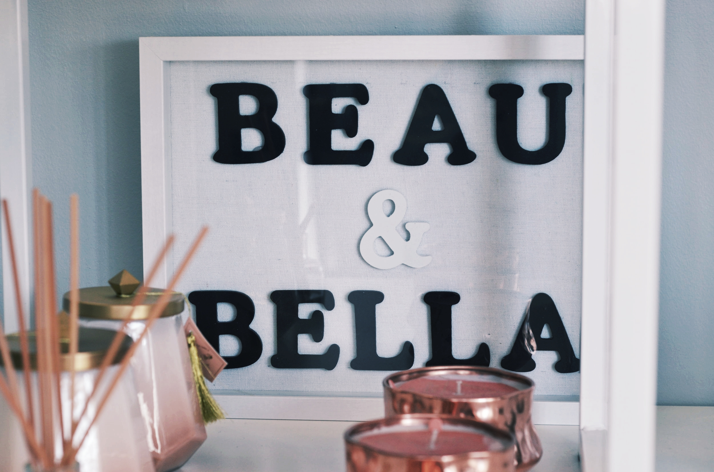 Beau & Bella with candles.JPG