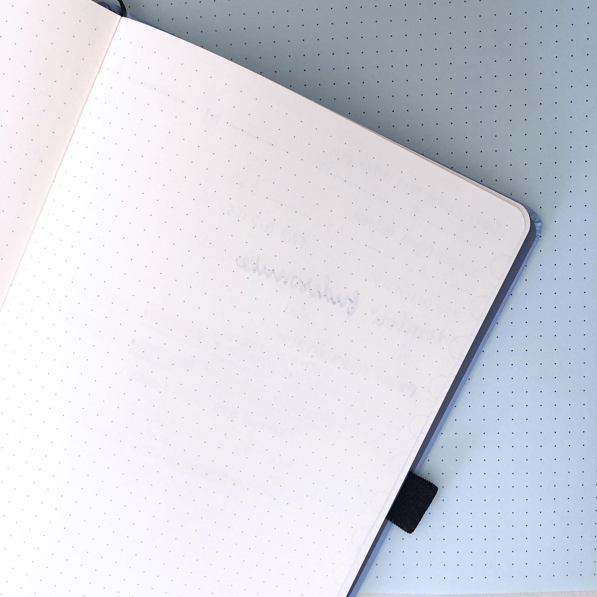 Pen Test 2 - Dingbats Notebook Review.jpg