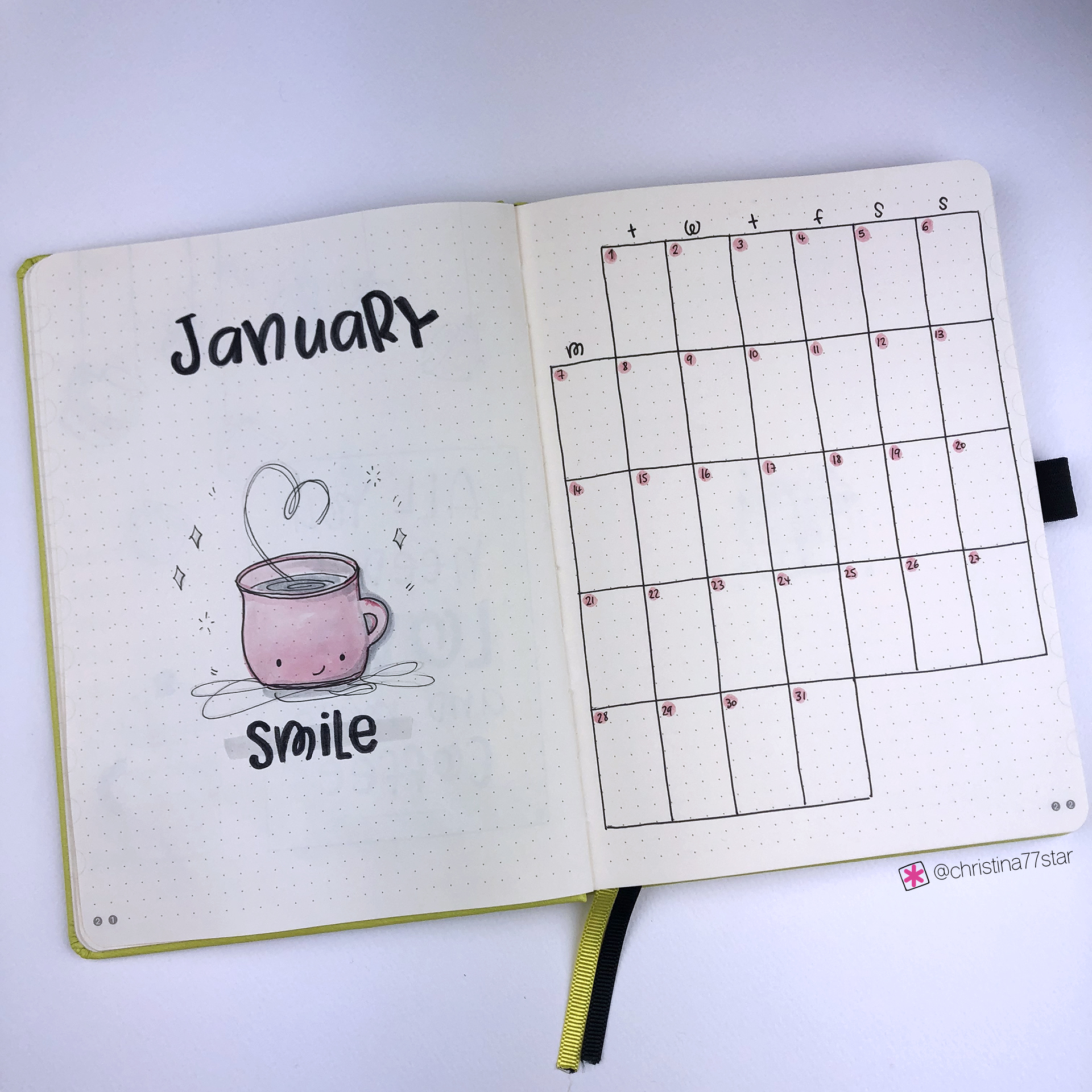 Month at a Glance - Bullet Journal Plan with Me - January 2019